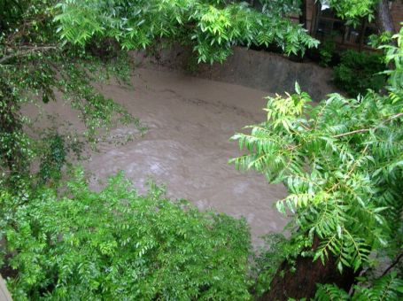 The next day's result: large amounts of water in the drainage area behind my old apartment