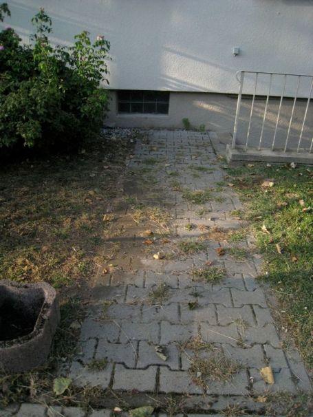 Ew! I did this small sidewalk on Sunday
