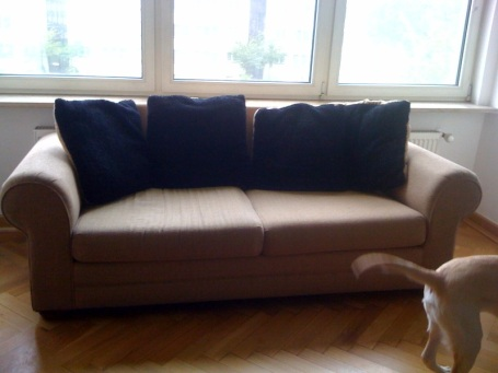 Old Couch. It deserves the blurry shot it got. (I feel bad about saying that - it was a great couch for 6-7 years.)